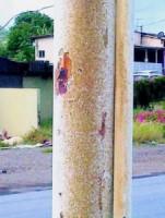 Volgens een huiseigenaar in Blue Bay veroorzaakt de groen-gele aanslag roest van de ondergrond waar het zich op hecht.