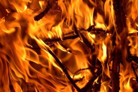 Brandweer redt bejaarde uit brandend huis