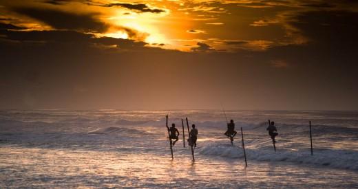 Sri Lanka-tilt-fishing