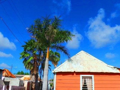 Berg Altena | Picture This Curacao - Manon Hoefman