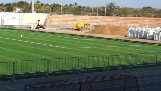 De nieuwe grasmat in het SDK-stadion ligt er | FOTO Martha van Bergen