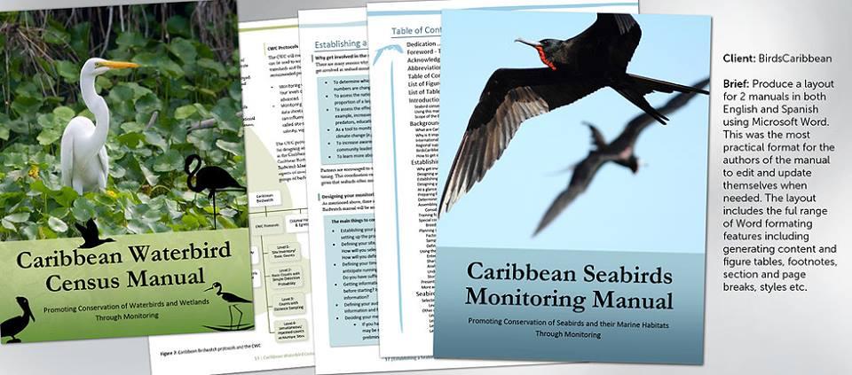 Bird Caribbean zoekt vrijwilligers om te tellen