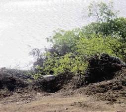 De werkzaamheden die bij de mangroven bij Piscadera  uitgevoerd.