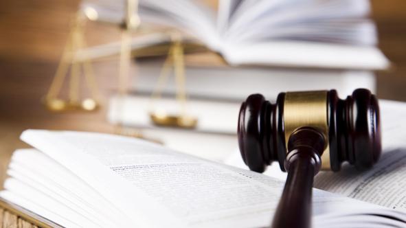 HOF | Uitspraken in de zaak Larimar