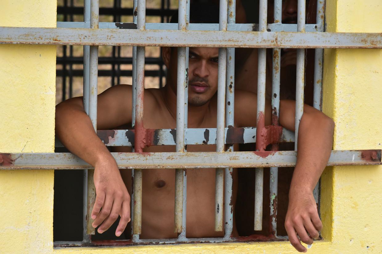 DolfijnFM   Verdachten mensenhandel klagen over SDKK