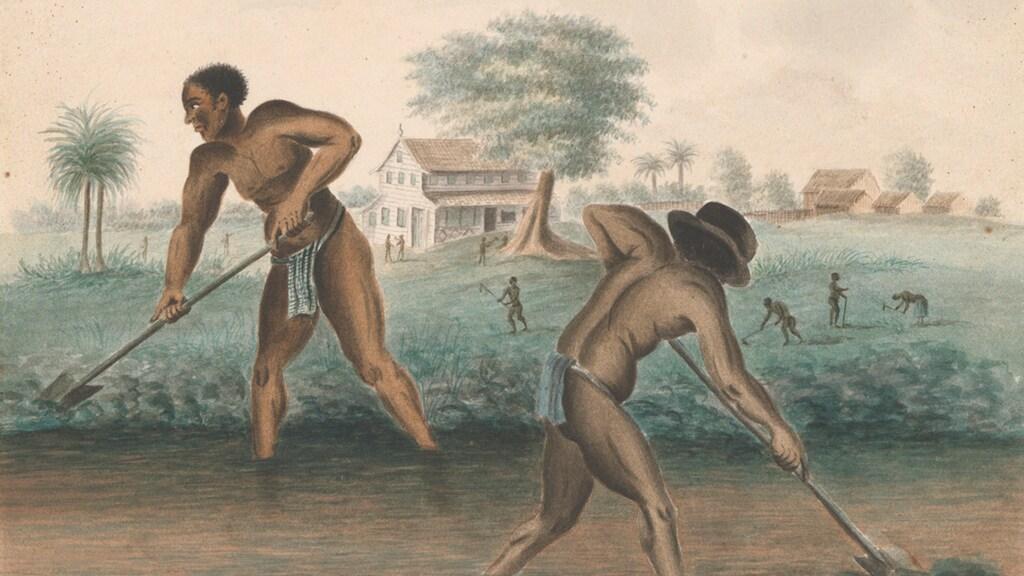 RTL | Tentoonstelling Slavernij in Rijksmuseum geeft slaven hun naam terug